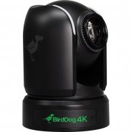 "BirdDog P4K Black. 4K 10-Bit Full NDI PTZ with 1"" Sony Sensor."