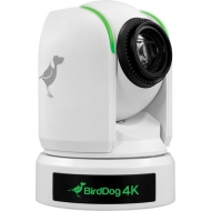 """BirdDog P4K White. 4K 10-Bit Full NDI PTZ with 1"""" Sony Sensor."""