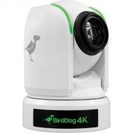 "BirdDog P4K White. 4K 10-Bit Full NDI PTZ with 1"" Sony Sensor."