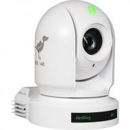 BirdDog P400 White. 4K 10-Bit Full NDI with Sony Sensor