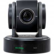 BirdDog Eyes P100 1080P full NDI PTZ Camera with SDI (Black)