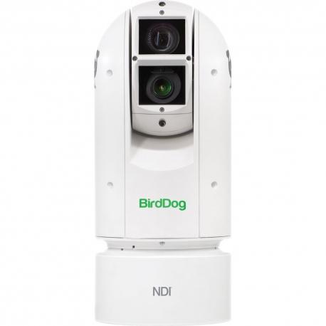 BirdDog Eyes A300 IP67 Extreme Weatherproof Full NDI PTZ Camera w/Sony Sensor & SDI (White) (PSU sold seperately)